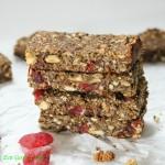 granola protein bars