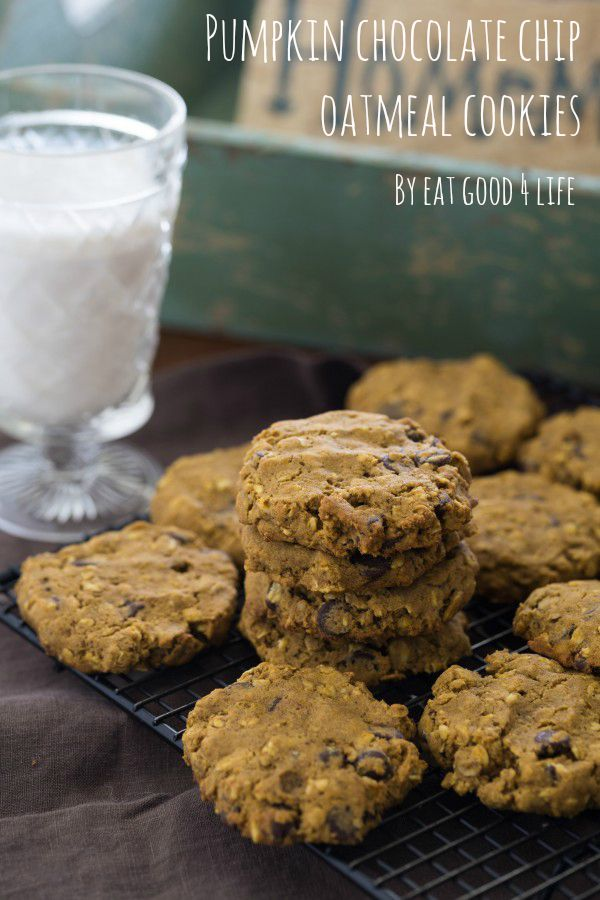 pumpkin chocolate chip oatmeal cookies – Gluten free. These cookies ...